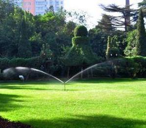 滨湖区绿化养护